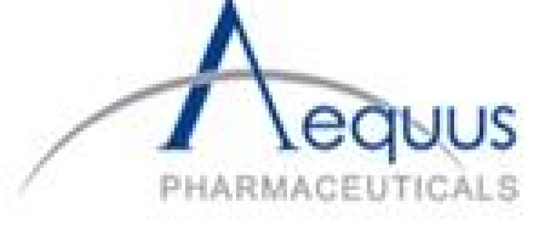 Aequus Provides General Update and First Quarter 2021 Financial Highlights