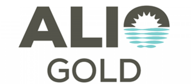 ARGONAUT GOLD AND ALIO GOLD ANNOUNCE FRIENDLY AT-MARKET MERGER
