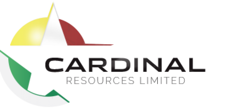 Cardinal – Namdini Project Finance Update