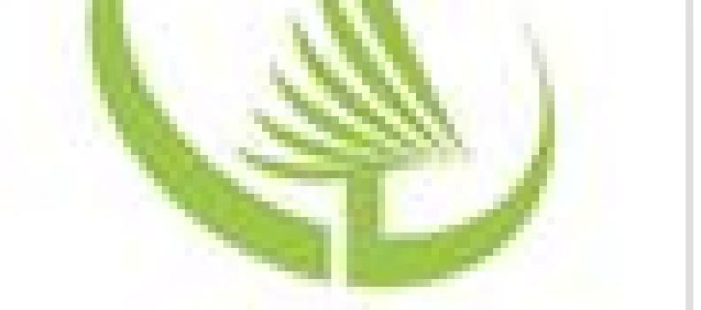 Conifex Announces COVID-19 Response Measures