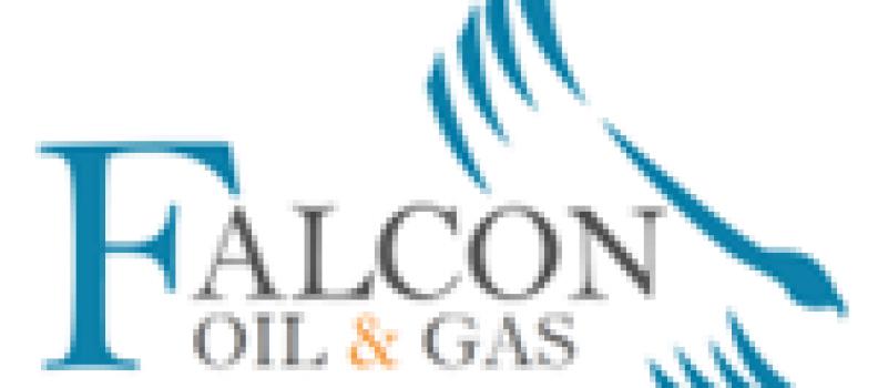 Falcon Oil & Gas Ltd. – 2021 Work Programme Update – Beetaloo Sub-Basin
