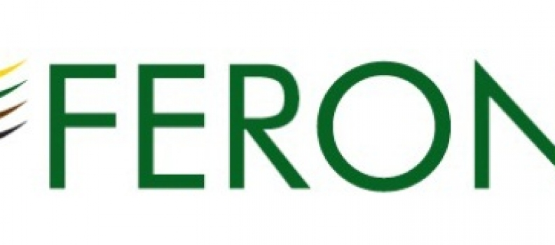 Feronia Inc. Accepts Auditor Resignation
