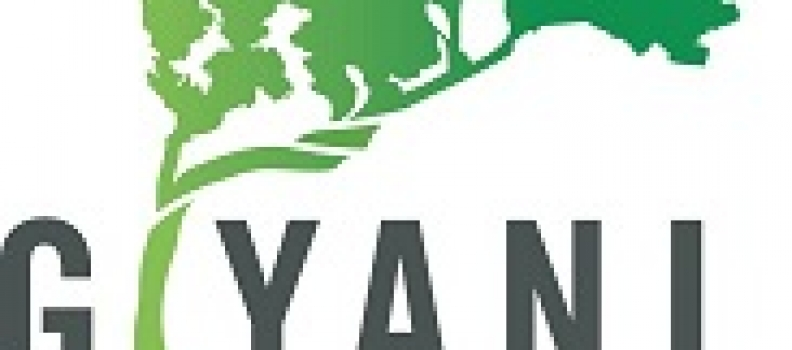 Giyani Consolidates Corporate Structure