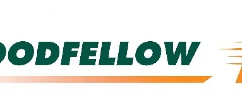 Goodfellow Reports Its Results for the Fiscal Year Ended November 30, 2019