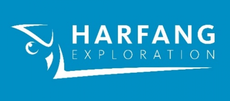 Harfang Announces the Grant of Stock Options to Directors, Officers, Employees and Consultants