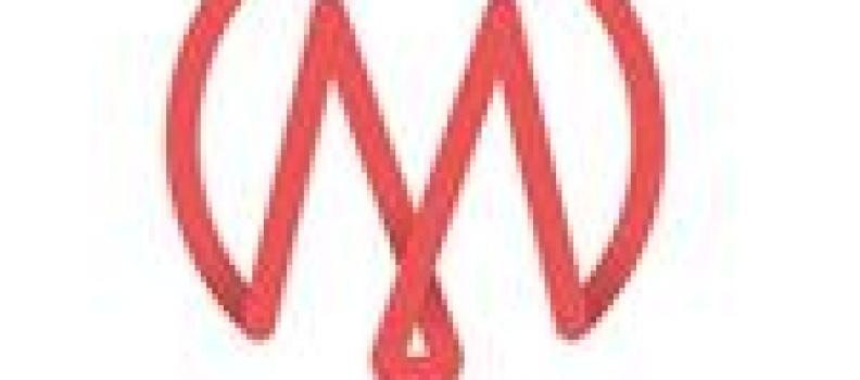 MediaCentral Corporation Appoints Carmelo Marrelli CFO; Announces Former CFO Rodney Davis Has Stepped Down