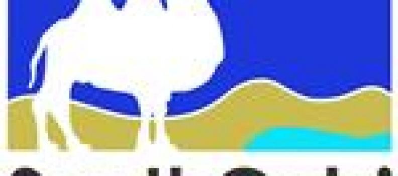 SouthGobi Announces Deferral of Payment Obligation Under Convertible Debenture