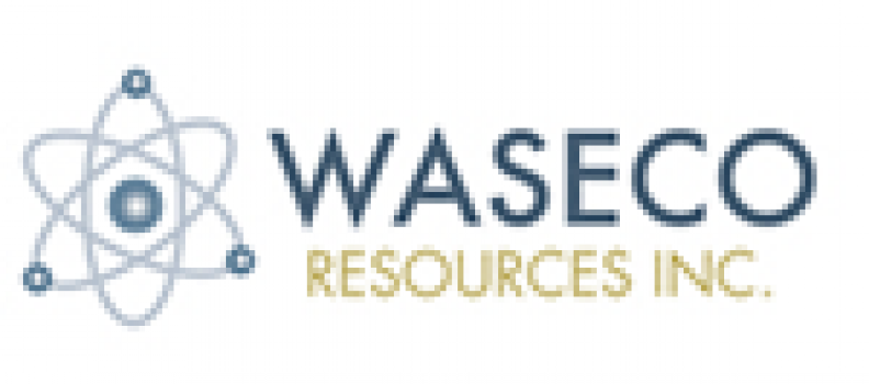 Waseco Grants Options